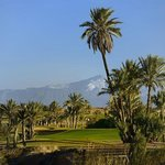 Palmtrees and views of the Atlas Mountains