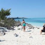 Beach (iguana)