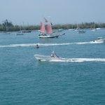 Gulf boats