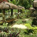 Internal garden!