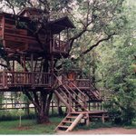 Swiss Fam Complex Treehouse
