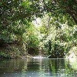 Mamiku River runs below the house