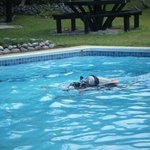 Free lessons in the pool to learn the basics and the equipment