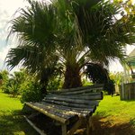 Bamboo bench or Hammocks relaxation style...