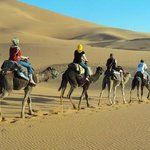 Camel Trekking in Morocco with Tours Of Peace & Morocco Trips