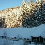 Peisaj hibernal pe Valea Cerbului
