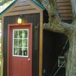 White Oak tree house entrance
