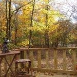 Maple Oak tree house lower deck