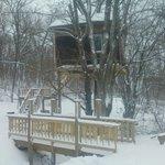 Maple Oak Tree House in winter