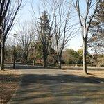 府中の森公園 その2