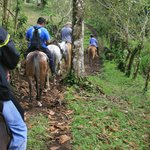 Horseback Ride to the Waterfall.