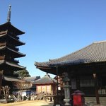五重塔と本堂
