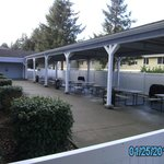 Covered patio and picnic area with gas grills