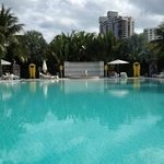The Standard Infinity Pool on Biscayne Bay