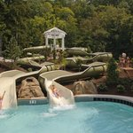 Allegheny Springs Water Slides