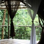 View from Mis Ojos Treehouse