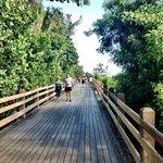 Boardwalk-acess from the poolarea!