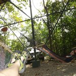 hanging in the hammocks