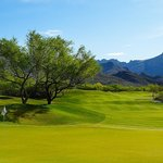 Golf Course- Canyon #7