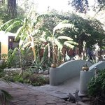 The lovely grounds of Casa Leree