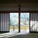 苔寺です。