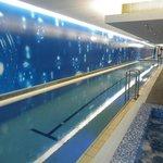 Awesome Lap pool