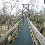 The susoension bridge