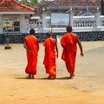Buddhists of to worship.