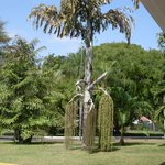 Look at  a unusual tree