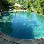 Villa 138 pool