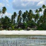 Photo of Nyota Beach Bungalows
