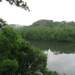 Potomic River