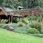 Secrets On The Lake - Montville Qld