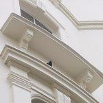 pigeon guard