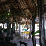 Burro's Bar from the bar
