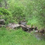 Sunday Creek