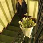 Escaleras acceso habitaciones