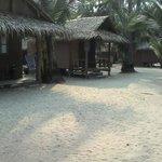 Tiger Hut Foto