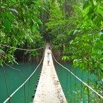 Puente que une la Paloma con el pueblo