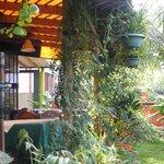 Nuestra terraza y jardin