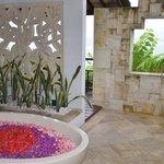 Flower Bath...