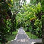 The lush gardens