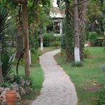 Chilled garden area