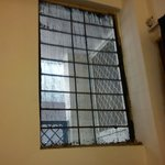 "just wire meshed window for ""Guaranteed Hindered Privacy"""