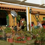 Iguana, where the sun and food shine!