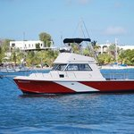 Our northshore dive boat Reliance
