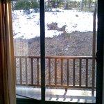 Vista desde el comedor hacia el balcón (¿vista?)