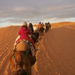 Desert Dream 4x4 Day Tours