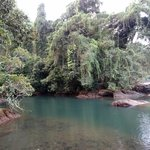 rio claro lovely fresh water swimming hole beside ocean