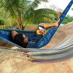 hammocks at lookout poin